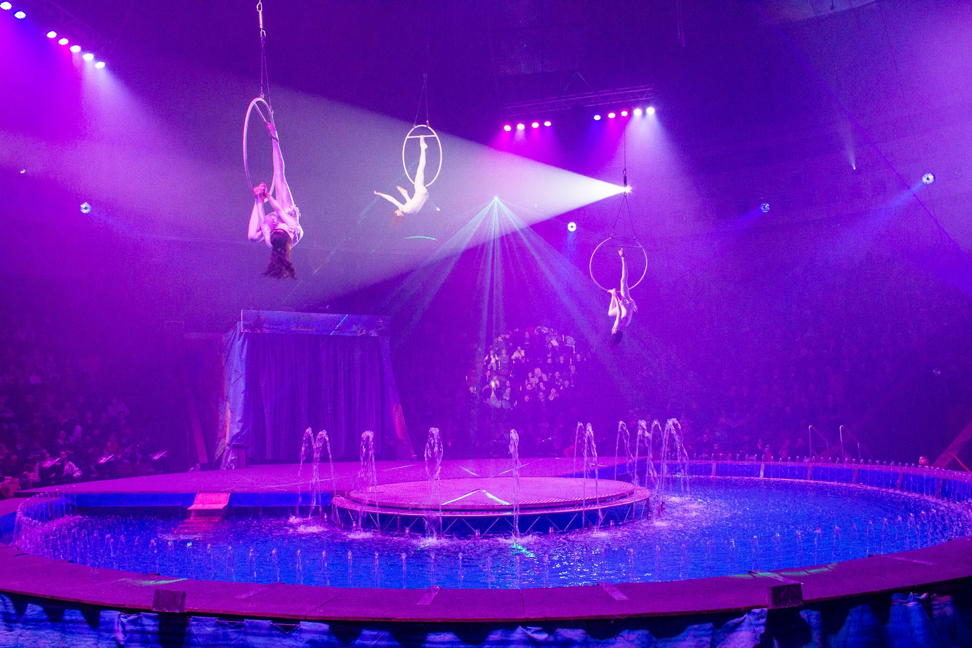Різдв'яний спектакль у цирку